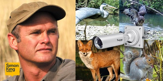 Simon King Wildlife Brings the Public Closer to the Natural World via VIVOTEK Network Cameras